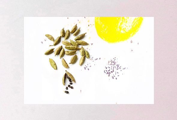 Gin Venice - Vendita Gin online - Ingredienti Gin - Cardamomo Gin