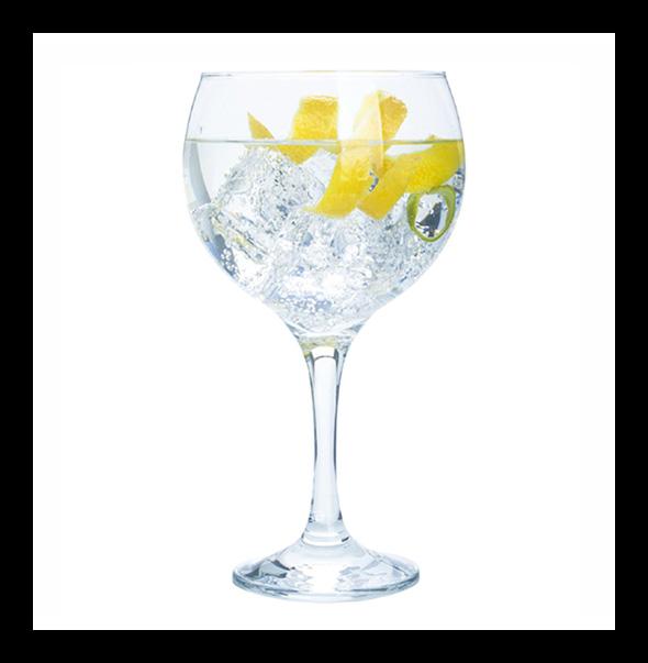 Gin Venice Tonic - Gin Venice cocktail